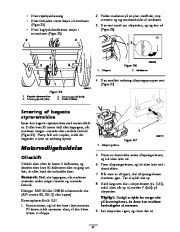 Toro 62925 206cc OHV Vacuum Blower Ejere Håndbog, 2006 page 21