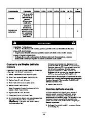 Toro 38053 824 Snowthrower Manuale Utente, 2000, 2001 page 20